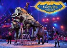 Karácsonyi Eötvös Cirkusz Budapesten