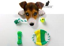 4 részes kutya játékkészlet