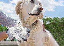 My Pet Petter kefe kesztyű kutyáknak