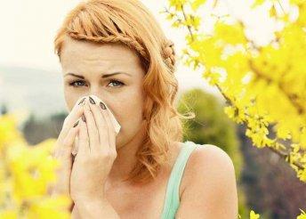 Elektrodinamikai allergiavizsgálat több helyszínen